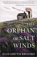 The Book Jacket of The Orphan of Salt Winds